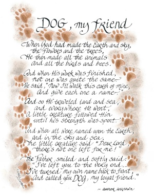 405-1114-dog-my-friend