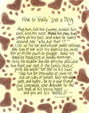 408-0810-how-to-really-love-dog